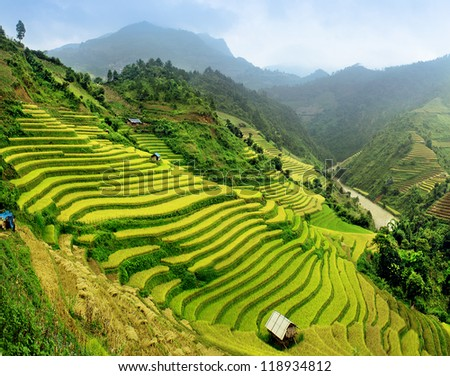 Rice fields Mu Cang Chai, Vietnam - stock photo