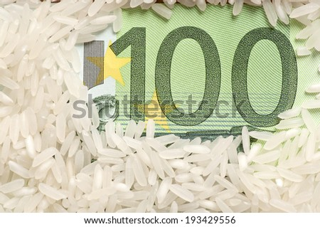 Rice grains on one hundred euro - stock photo