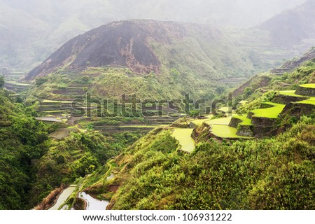 Rice terrace in the rain. Cordillera mountains, Luzon, Philippines - stock photo