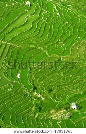 Rice terrace landscape in Yuan Yang, China - stock photo