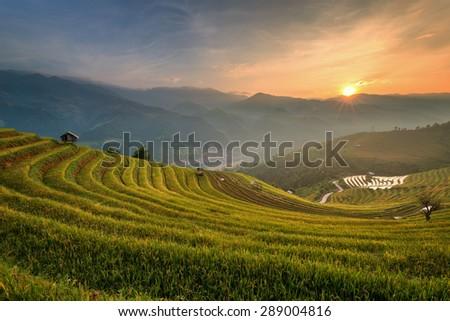 Rice terrace , Mu Chang Cai , Vietnam - stock photo