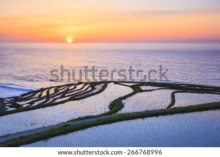 Rice terraces at sunset, Shiroyone senmaida,Ishikawa, Japan - stock photo