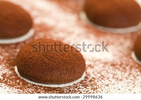 Rich chocolate cookies dusted with cocoa