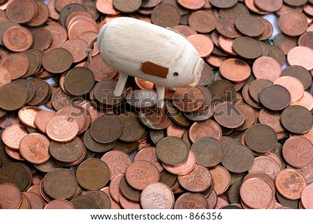 rich pig with pennies - stock photo