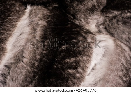 Rich soft gray fur close up - stock photo