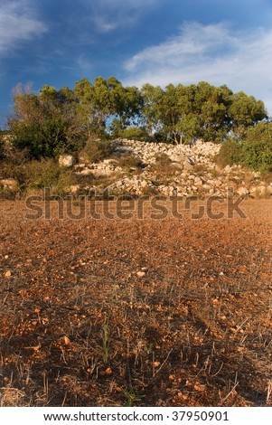 Rich soil - stock photo