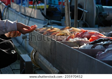 Household waste sorting recycling kitchen bins stock photo for Fish market richmond va