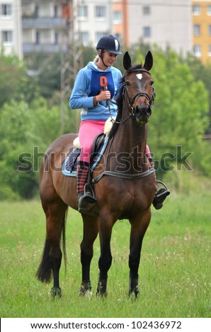 Rider in the jumping show - stock photo