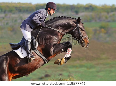 Rider on bay horse in jumping show - stock photo