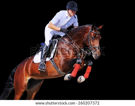Rider on bay horse in jumping show, isolated on black background