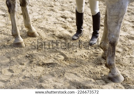 Rider preparing to mount a horse - stock photo