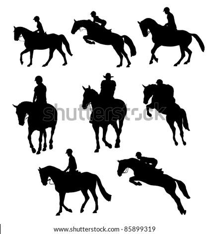 riding horse - stock photo