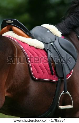 Riding Saddle - stock photo