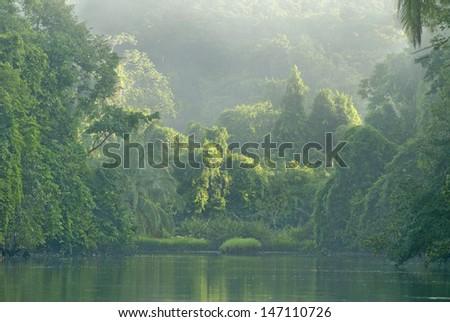 Rio Sirena River in Corcovado National Park, Costa Rica - stock photo