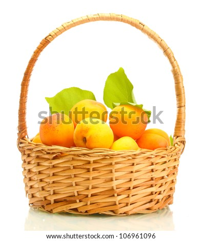ripe apricots with green leaves in basket isolated on white - stock photo