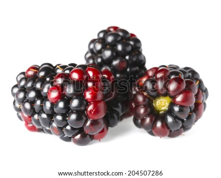 ripe blackberry in closeup  - stock photo