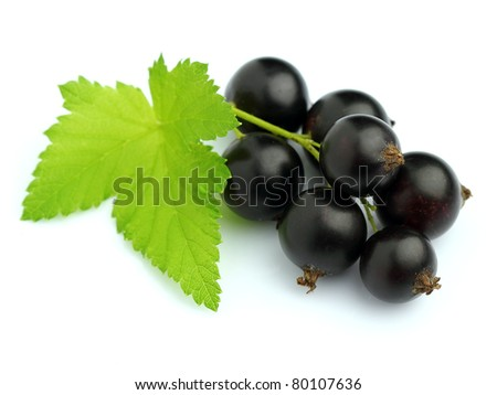 Ripe blackcurrant with leaves - stock photo