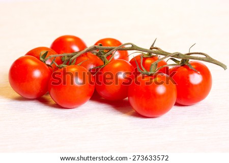 Ripe cherry tomatoes on a branch - stock photo