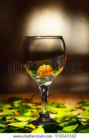 Ripe citrus calamondin in a large glass goblet, close up - stock photo