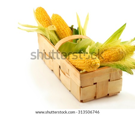 Ripe corn with green leaves in the wooden box isolated on white background, copy space - stock photo