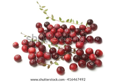 Ripe cranberries with leaves on white background - stock photo