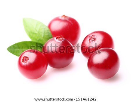 Ripe cranberry with leaves - stock photo