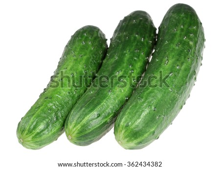 Ripe cucumbers it is isolated on a white background