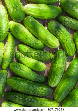 Ripe cucumbers texture on wooden garden table