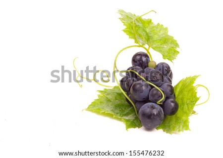 Ripe dark grapes with leaves, Isolated on white background,