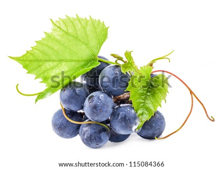 Ripe dark grapes with leaves, Isolated on white background, with clipping paths - stock photo