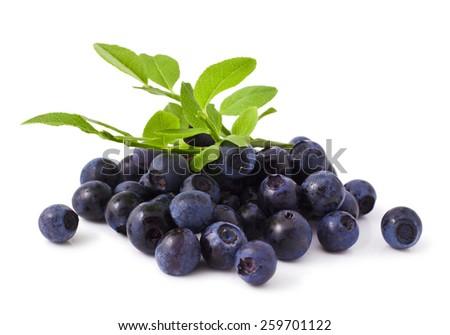 ripe fresh blueberry on a white background  - stock photo