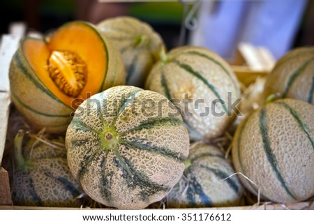Ripe fresh melons pile in a farmers market. Horizontal shot - stock photo