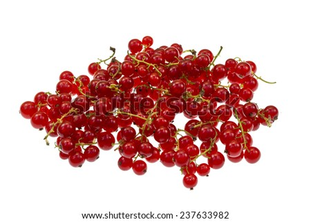 Ripe fresh red currant isolated on a white background. - stock photo