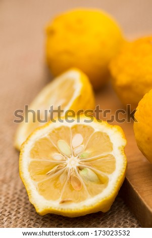 Ripe fruits of hanayuzu (Citrus hanayu) - stock photo