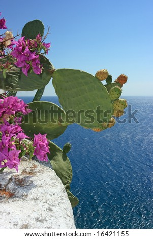 Ripe fruits of opuntia ficus-indica and beautiful flowers against the sea - stock photo