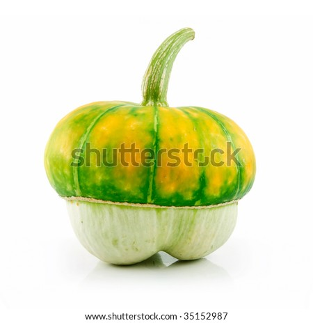 Ripe Gourds Vegetable Hybrid Isolated on White Background