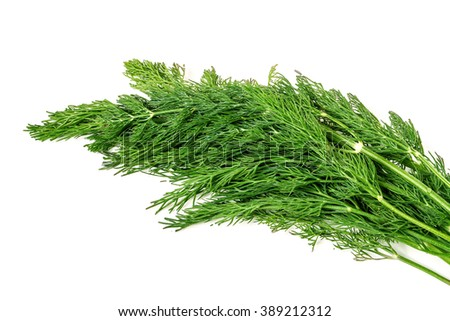 ripe green dill isolated on white background - stock photo