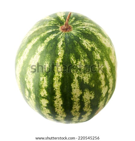 Ripe green watermelon fruit isolated over the white background - stock photo