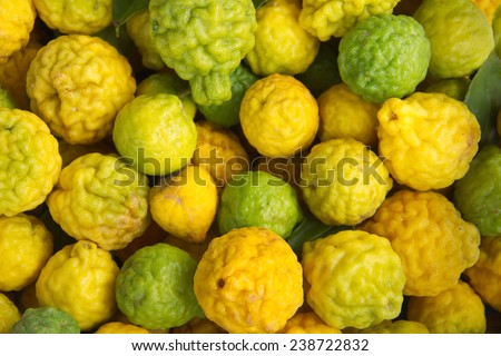 Ripe kaffir Lime or Bergamot fruit - stock photo