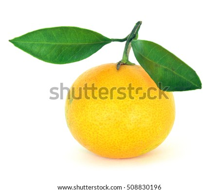 Ripe mandarin citrus with a leafs isolated tangerine mandarine orange on white background