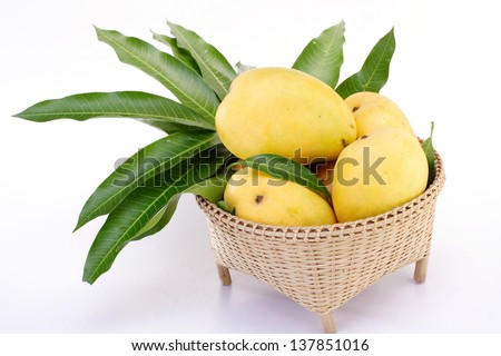 Ripe mangoes in basket - stock photo