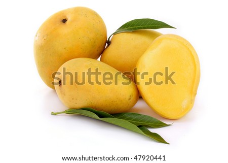 Ripe mangoes on white - stock photo