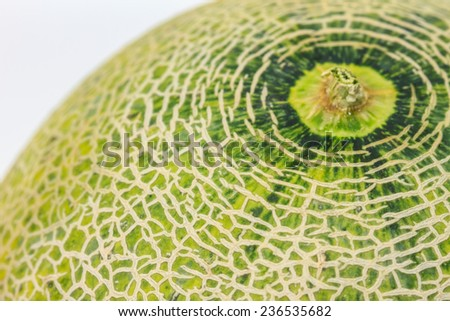 Ripe melon isolated on white background close up - stock photo