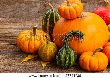 ripe of orange and green pumpkins with fall leaves on wooden table