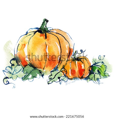 ripe orange two pumpkins with green leaves, vegetable, autumn harvest, watercolor sketch - stock photo