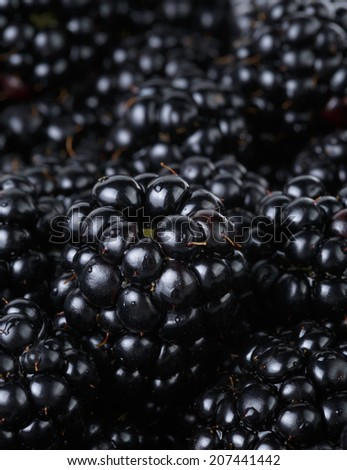 ripe organic blackberries close up, organic food background