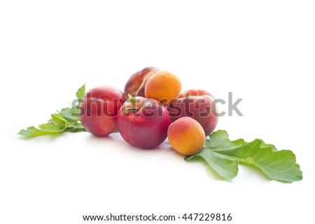 Ripe peaches on white background - stock photo