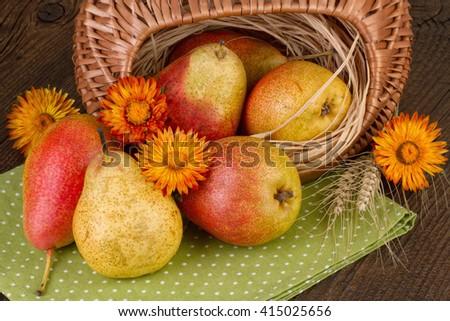 ripe pears autumn still life - stock photo