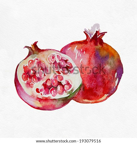 Ripe pomegranate fruit. Watercolor painting on white background. - stock photo