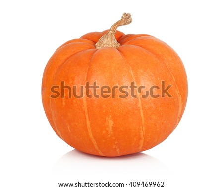 Ripe pumpkin on white background - stock photo